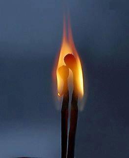 Les feux de l'Amour
