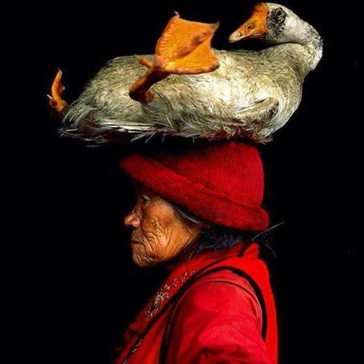 Femme chinoise et son animal de compagnie