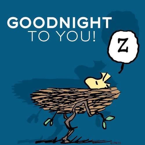Bonne nuit à tous et à demain !